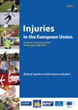 Injuries in the European Union 2013